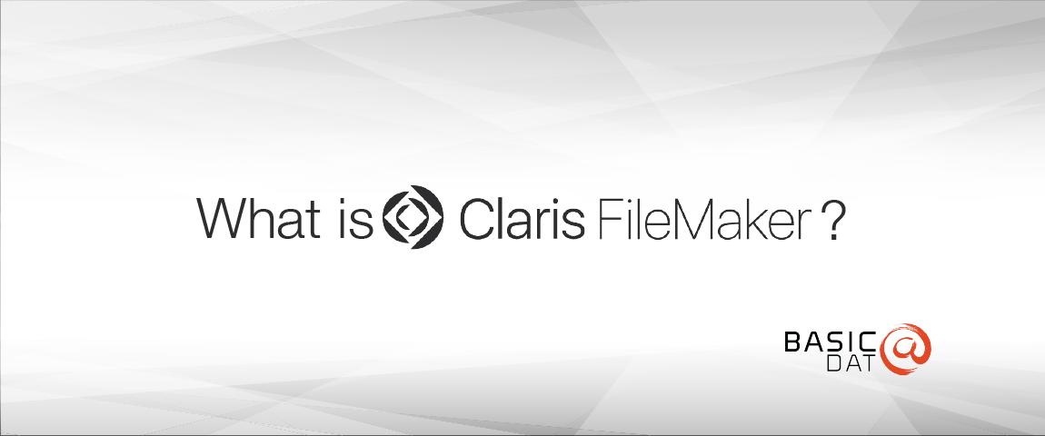 FileMaker_BasicData